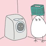一人暮らしの洗濯の頻度はどれくらいが適切か