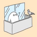 鳩のフンも苔もバッチリ対処!ベランダの大掃除のやり方と手順